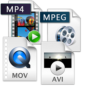 transfer mini dvd to computer file types